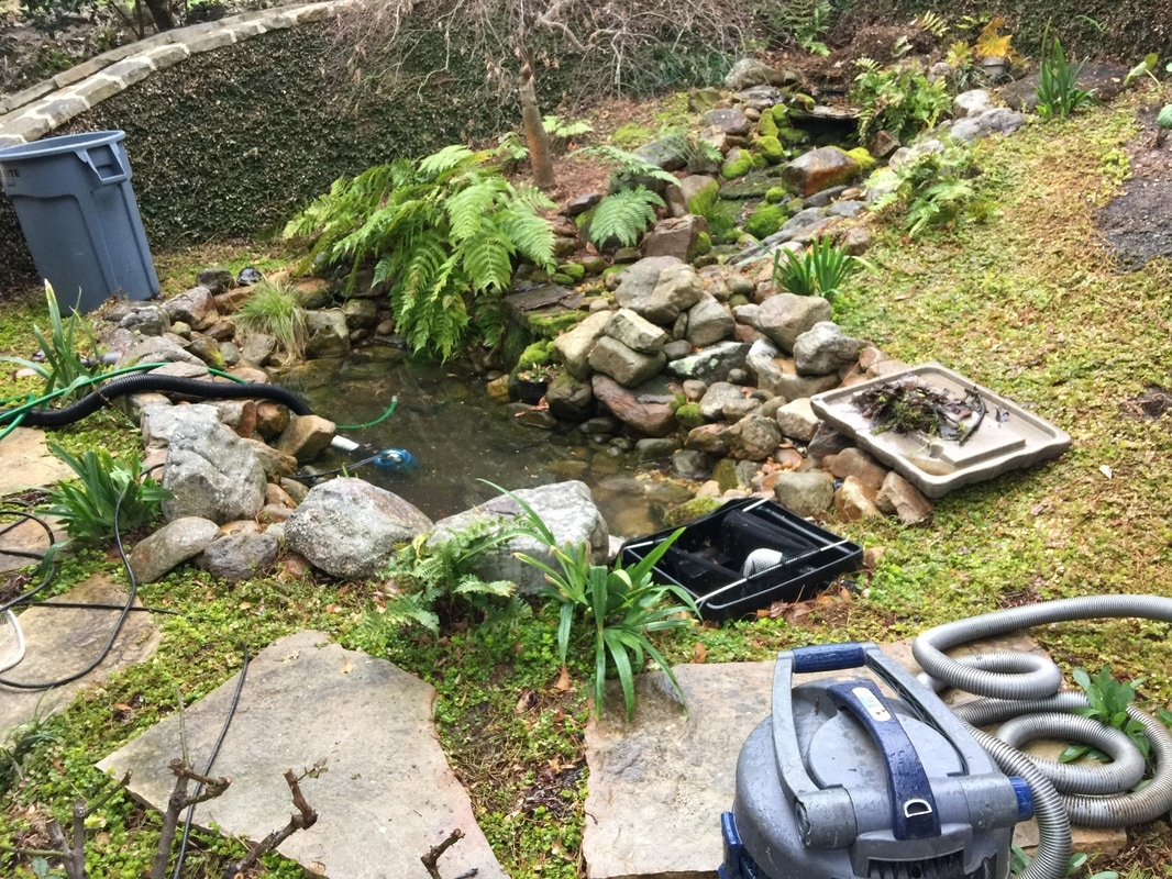 Koi pond repair alpharetta johns 28 images koi pond for Koi ponds for dummies